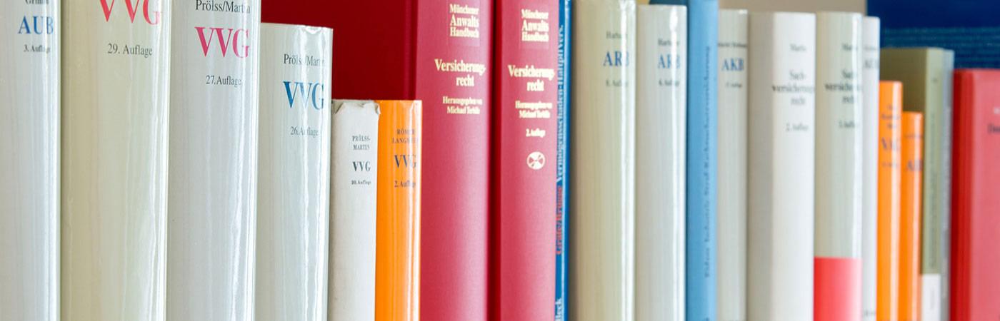 Himmelseher: Slide Bücher